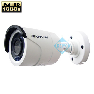 IPカメラ HIKVISION DS-2CD2022WD-I