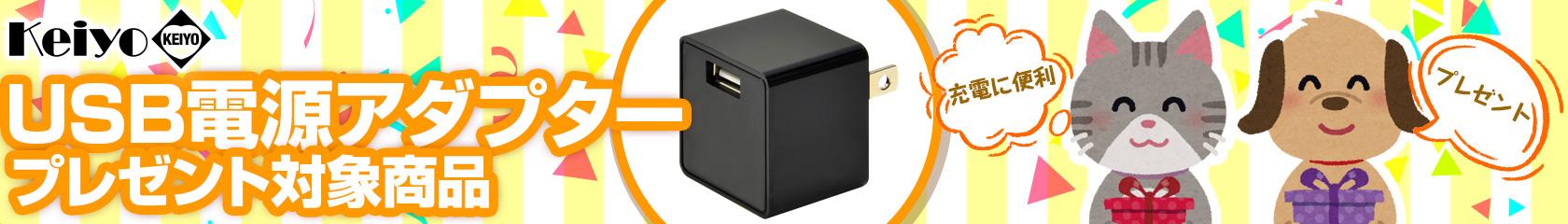 USB電源アダプタープレゼント